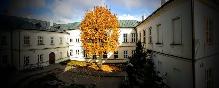 ILO w Rzeszowie - dziedziniec