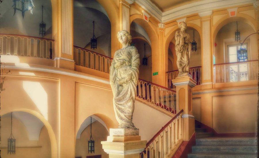 ILO w Rzeszowie - Muzy